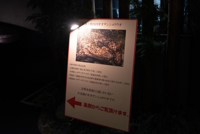 f:id:Atsuzo-SUN:20210201210629j:plain