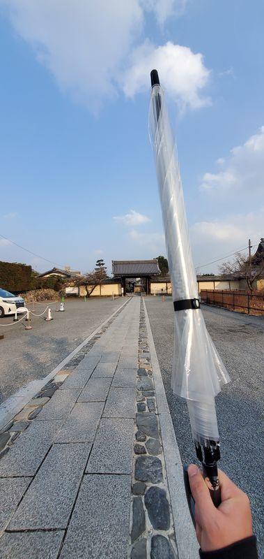 f:id:Atsuzo-SUN:20210207221632j:plain