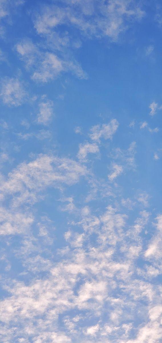 f:id:Atsuzo-SUN:20210307103937j:plain