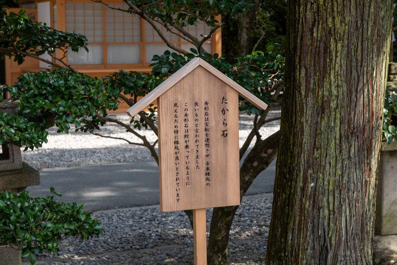 f:id:Atsuzo-SUN:20210307221556j:plain