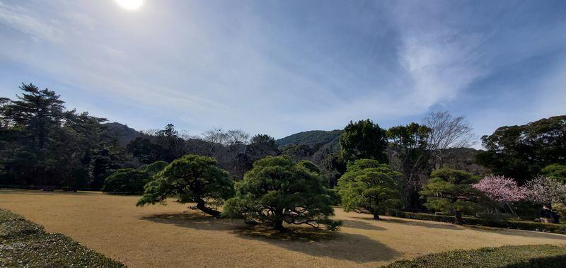 f:id:Atsuzo-SUN:20210307222805j:plain