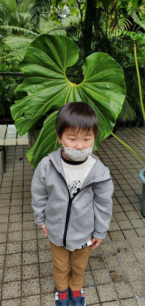 f:id:Atsuzo-SUN:20210320211122j:plain