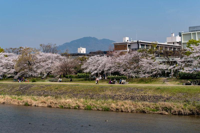 f:id:Atsuzo-SUN:20210330153116j:plain