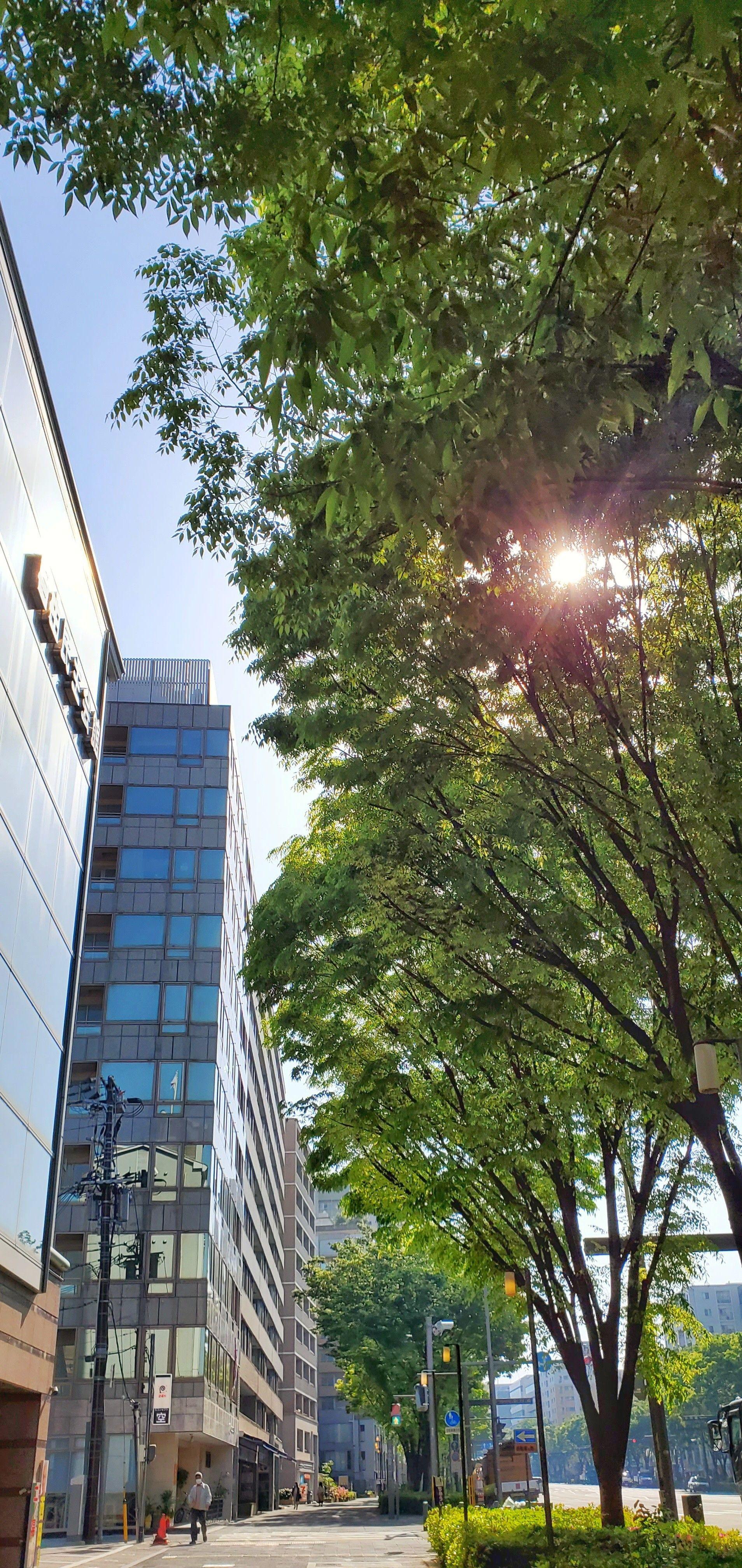 f:id:Atsuzo-SUN:20210421215406j:image