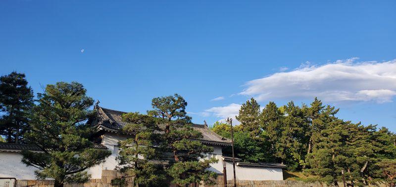 f:id:Atsuzo-SUN:20210502181410j:plain