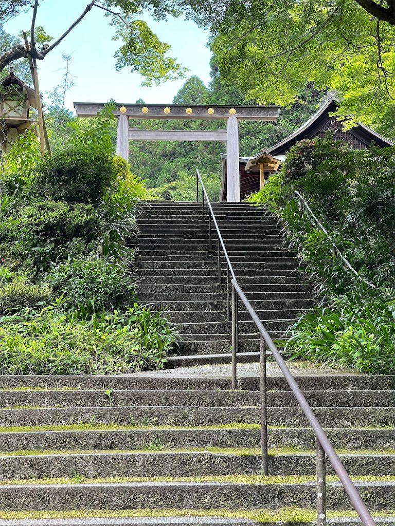 f:id:Atsuzo-SUN:20210620061701j:image