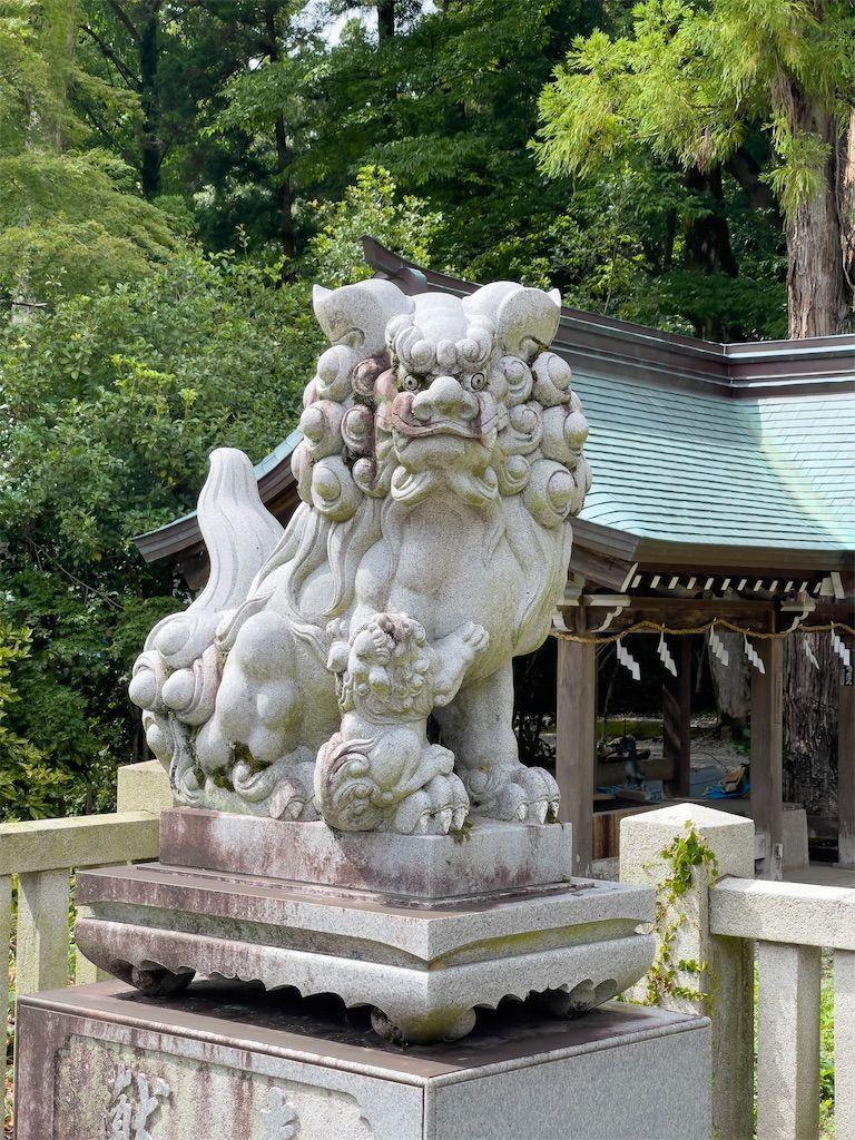 f:id:Atsuzo-SUN:20210624131507j:image