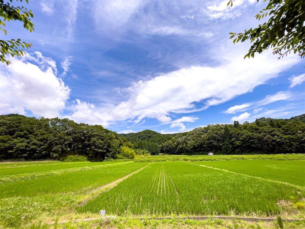 f:id:Atsuzo-SUN:20210624131510j:image
