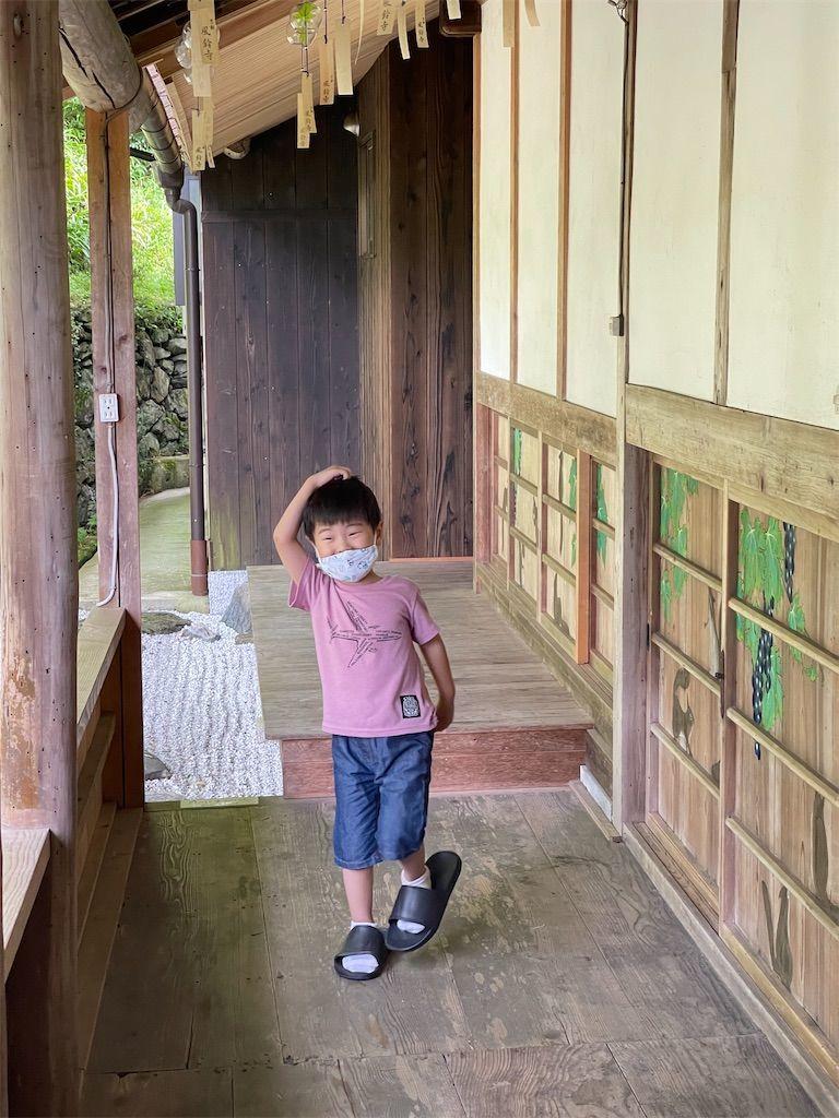 f:id:Atsuzo-SUN:20210718160017j:image