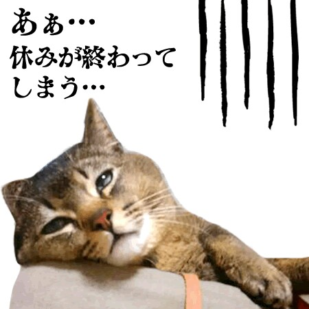 f:id:Ayako28:20170924192140j:image