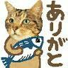 f:id:Ayako28:20170924192354j:image