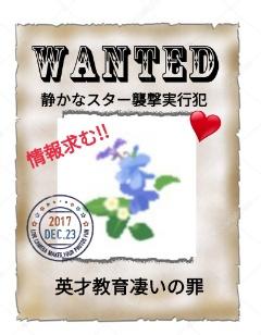 f:id:Ayako28:20171223222509j:plain