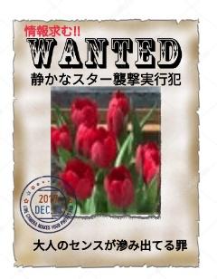 f:id:Ayako28:20171223222743j:plain