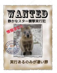 f:id:Ayako28:20171223222803j:plain
