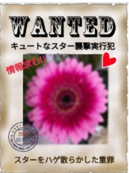 f:id:Ayako28:20171224171109j:plain