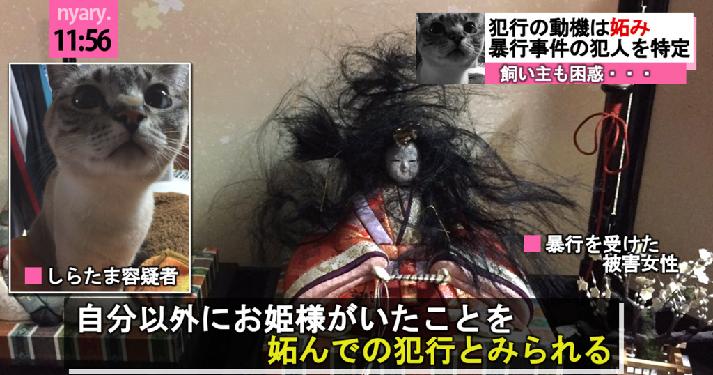 f:id:Ayako28:20180217032732j:plain