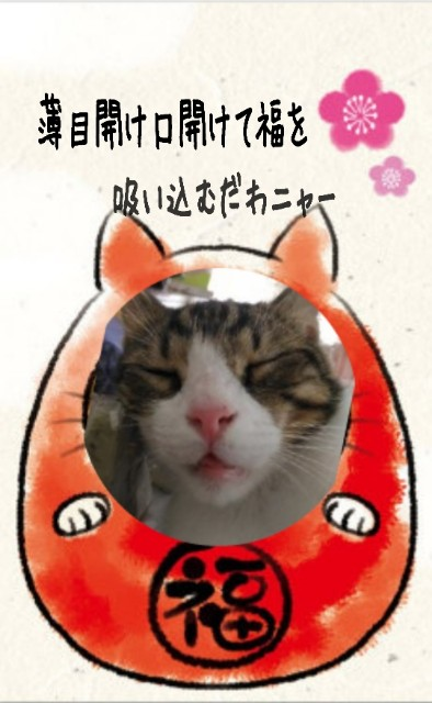 f:id:Ayako28:20180305154447j:plain
