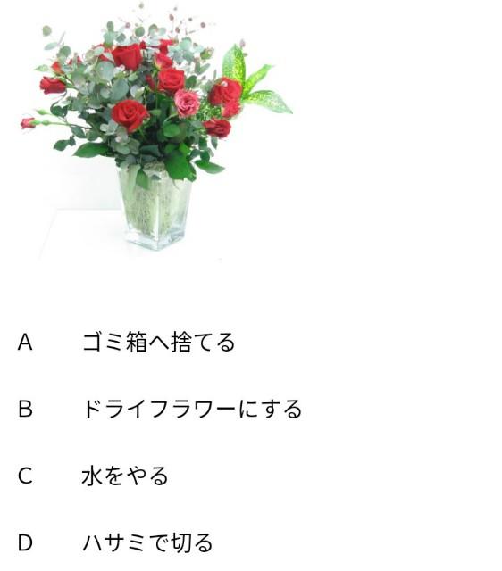 f:id:Ayako28:20180611100243j:plain