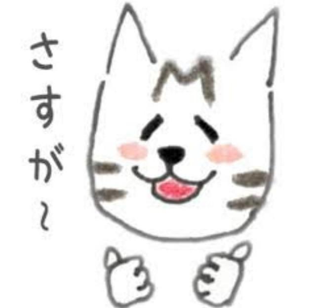 f:id:Ayako28:20180615004428j:plain