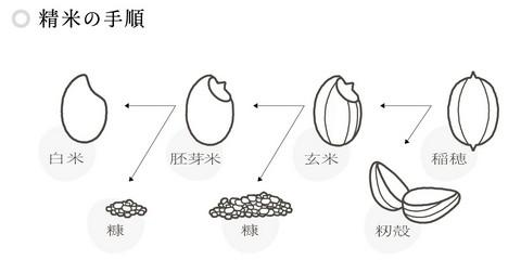 f:id:AyakoKITAGAWA:20151218204902j:plain