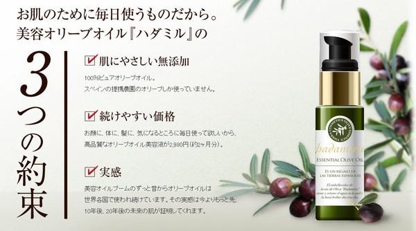 f:id:AyakoKITAGAWA:20151227022819j:plain