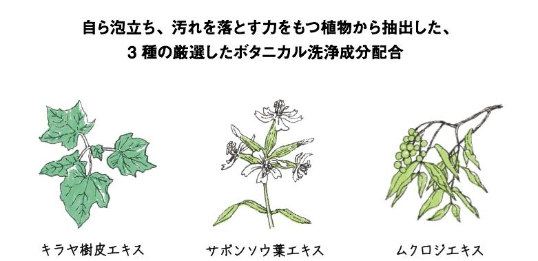 f:id:AyakoKITAGAWA:20160910235338j:plain