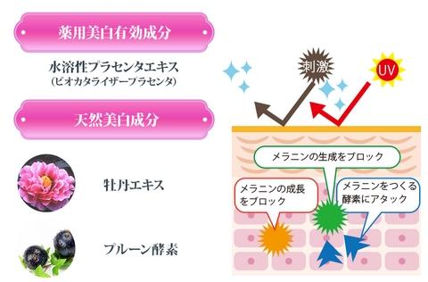 f:id:AyakoKITAGAWA:20161106231800j:plain