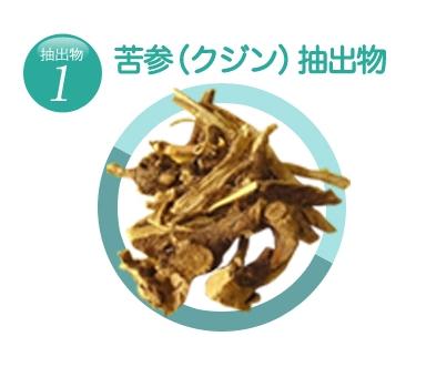 f:id:AyakoKITAGAWA:20161224151209j:plain