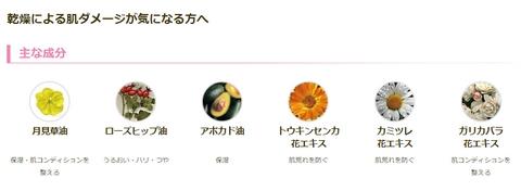 f:id:AyakoKITAGAWA:20170115014820j:plain