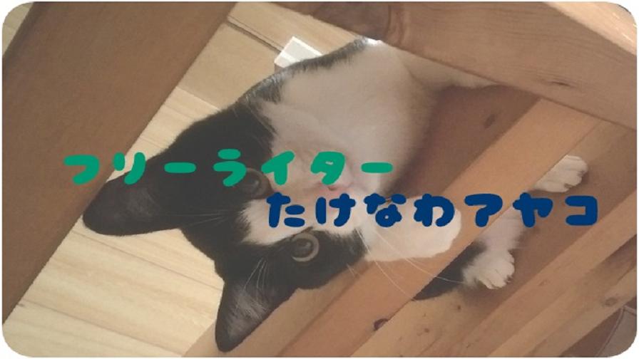 f:id:Ayako_Takenawa:20180821214908j:plain