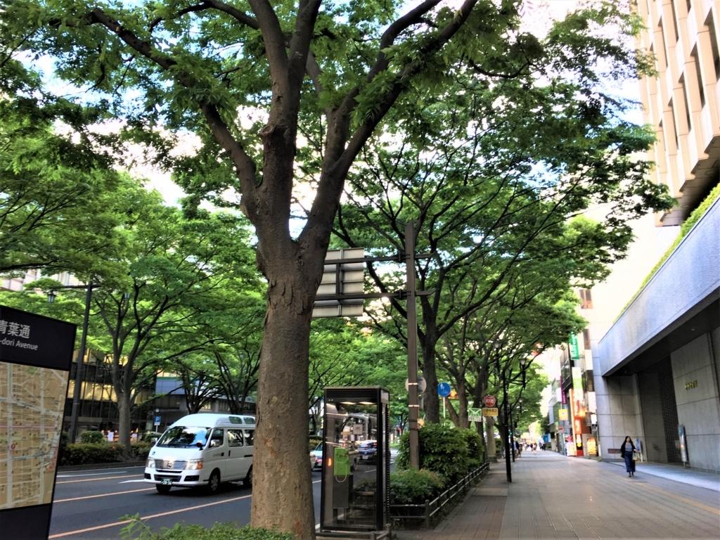 f:id:Ayamanaka:20180521152405j:plain