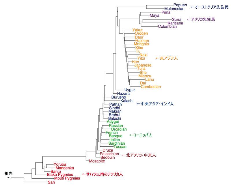 f:id:Ayasamoneu:20200820180856j:plain