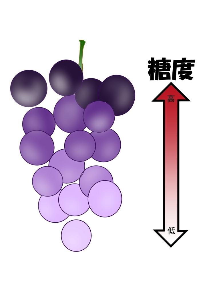 f:id:Ayata_Mitsui:20170625140231j:plain