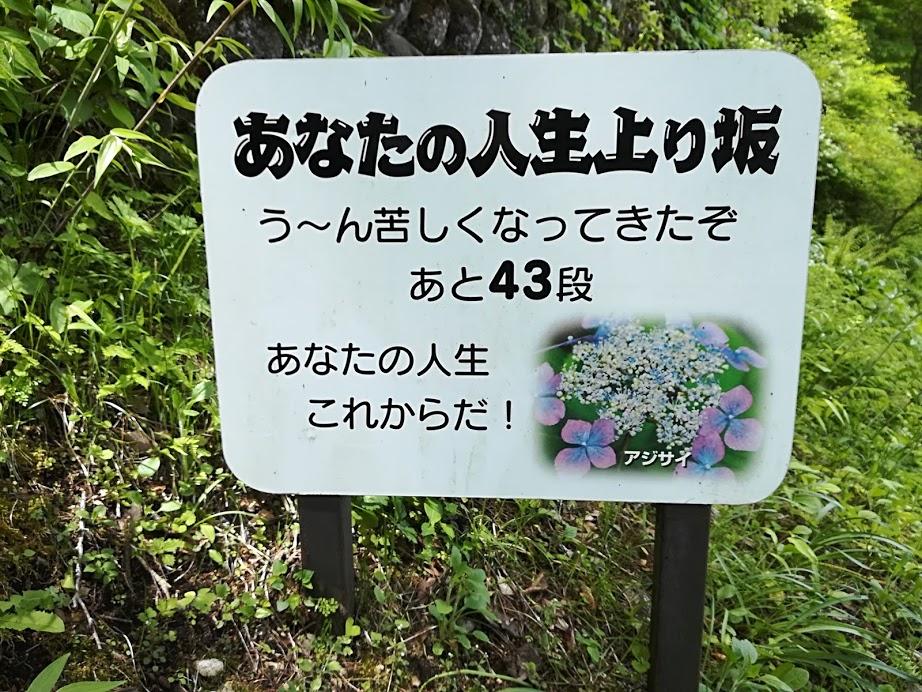 f:id:Ayatamama:20180507113951j:plain