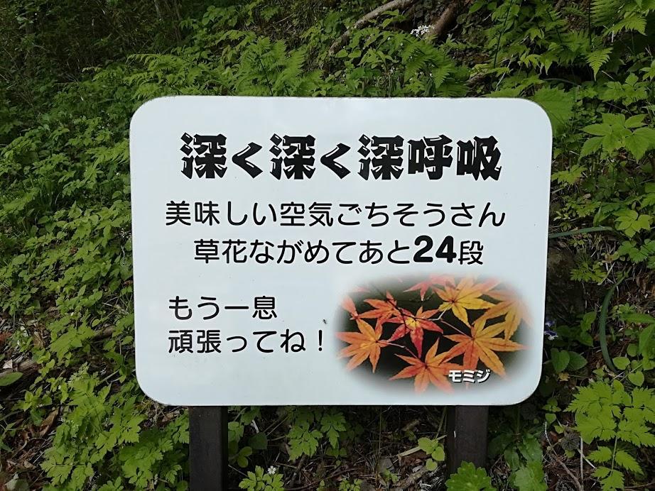 f:id:Ayatamama:20180507115636j:plain