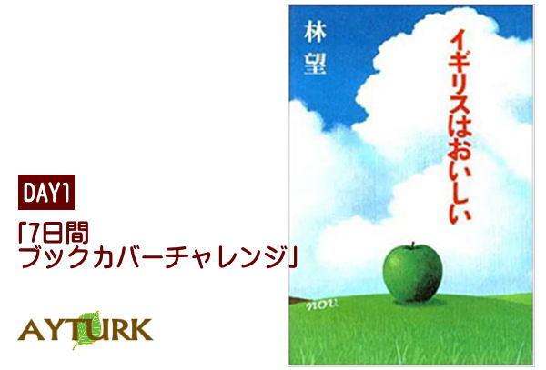 f:id:Ayturk:20200512162130j:plain