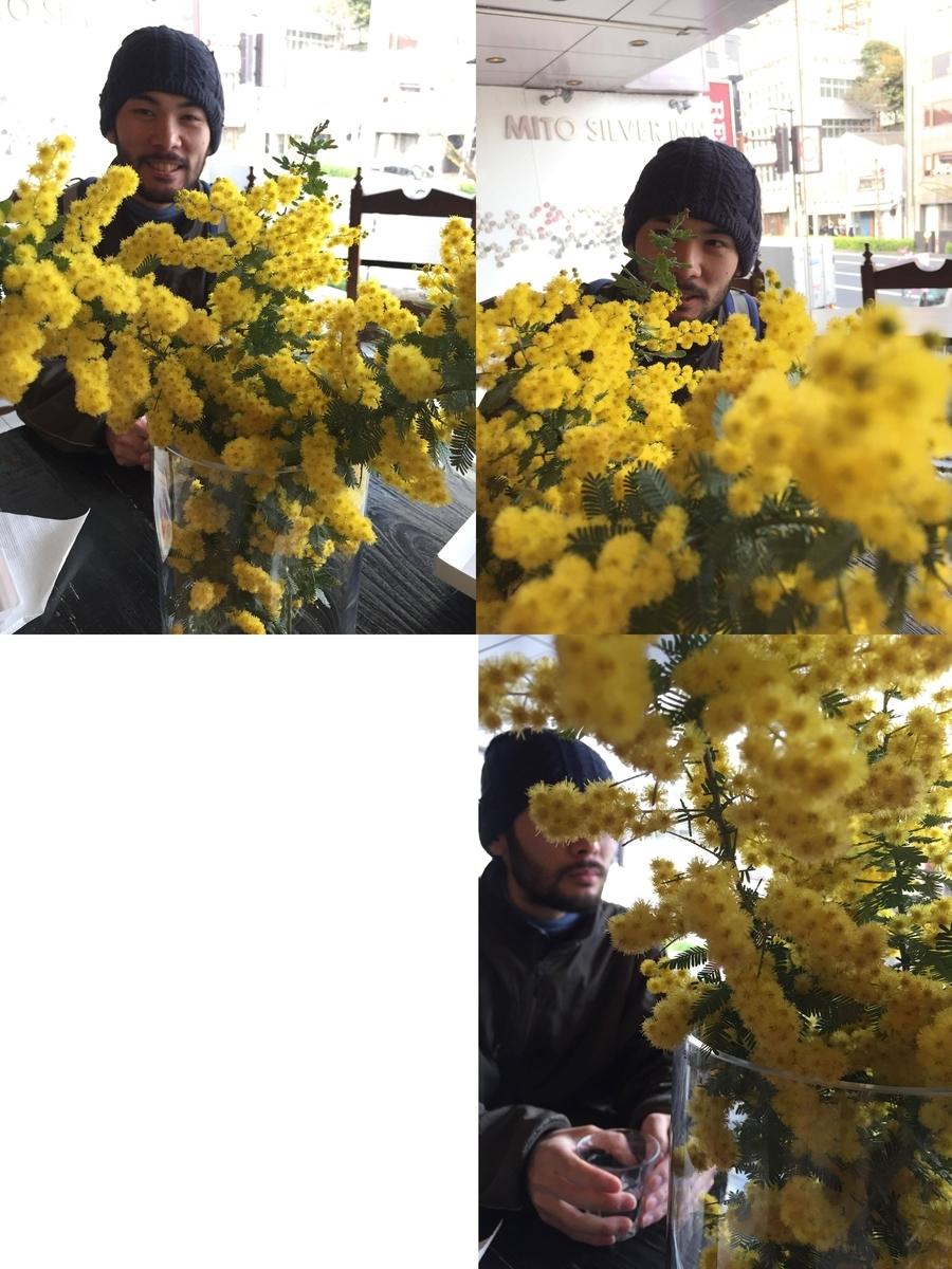 f:id:AzemichiKozou:20190324234459j:plain
