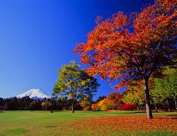 f:id:Azure-Dragon:20131001211637j:image:w360