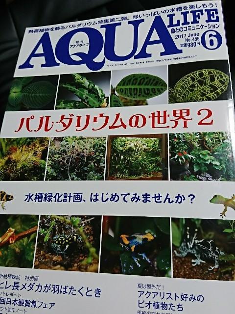 f:id:Azusa116:20170531230001j:image