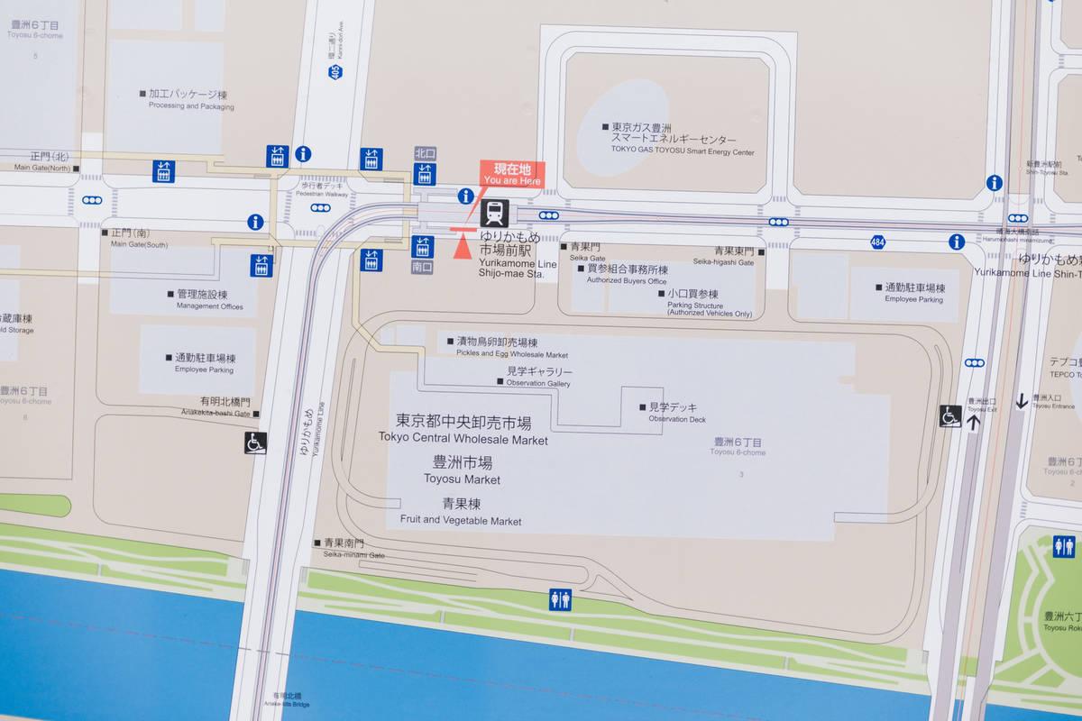 f:id:Azusa_Hirano:20190823173425j:plain