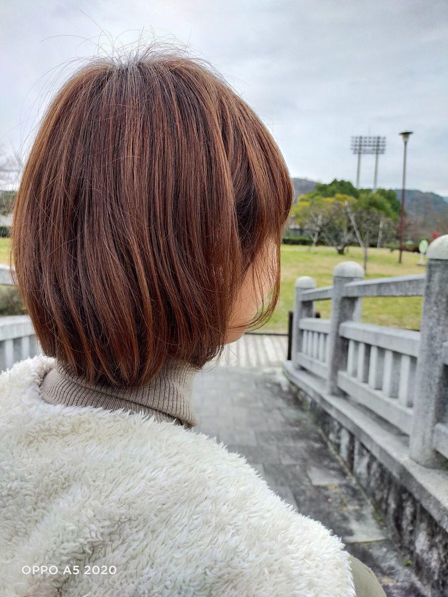 f:id:Azusa_Hirano:20200127111529j:plain