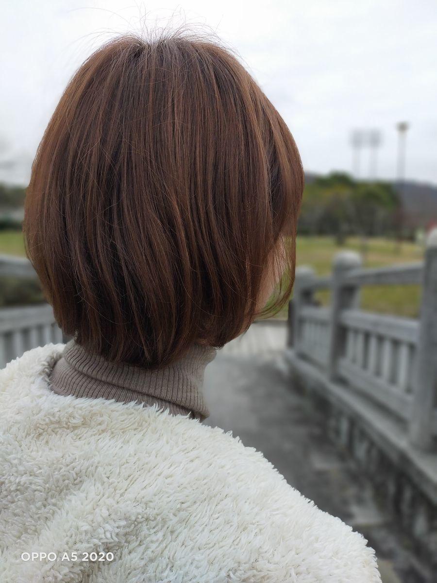 f:id:Azusa_Hirano:20200127111533j:plain
