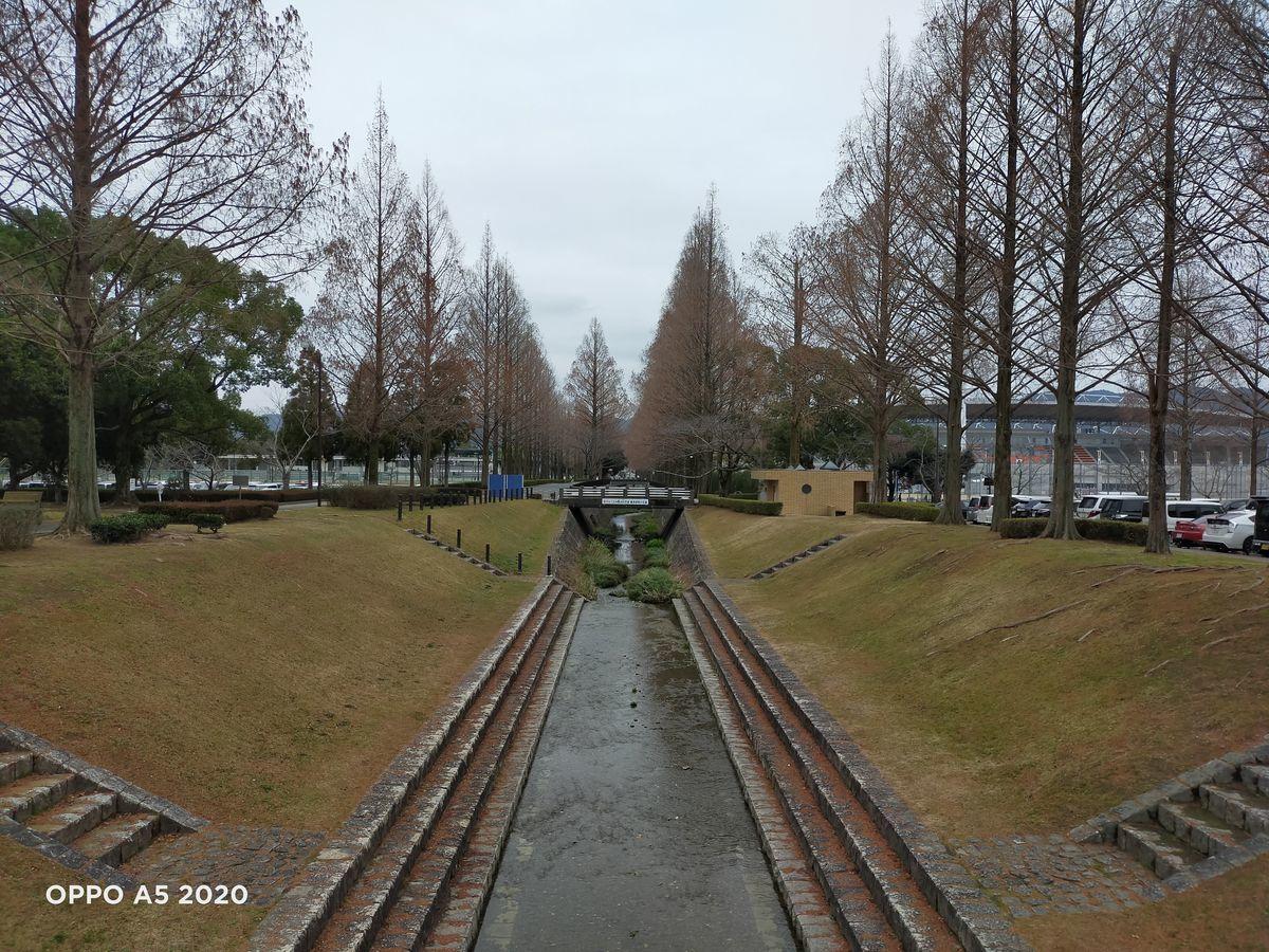 f:id:Azusa_Hirano:20200127112258j:plain