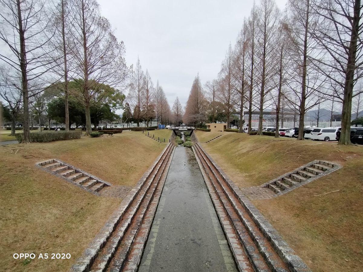 f:id:Azusa_Hirano:20200127112304j:plain