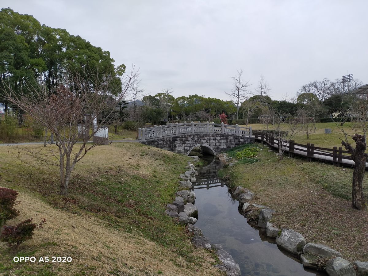 f:id:Azusa_Hirano:20200127112732j:plain