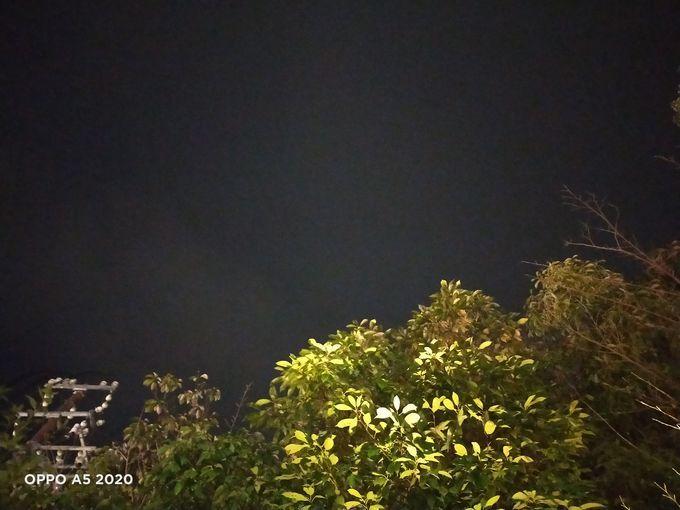 f:id:Azusa_Hirano:20200215165607j:plain