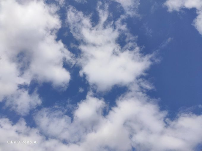 f:id:Azusa_Hirano:20200329213110j:plain