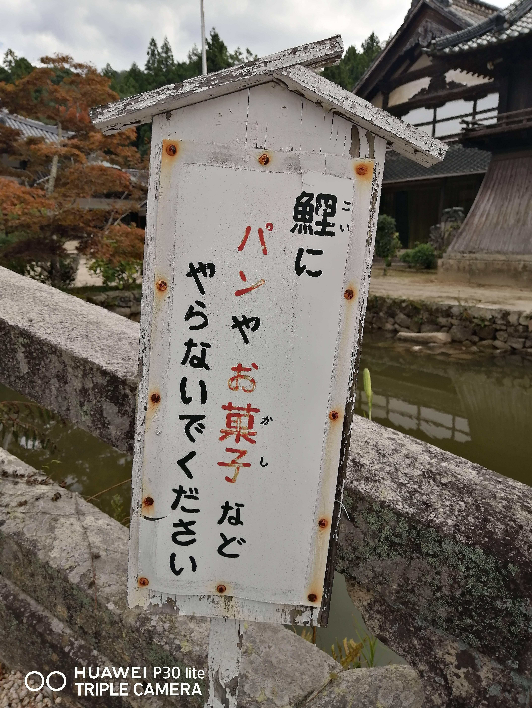 f:id:Azusa_Hirano:20200923132212j:plain