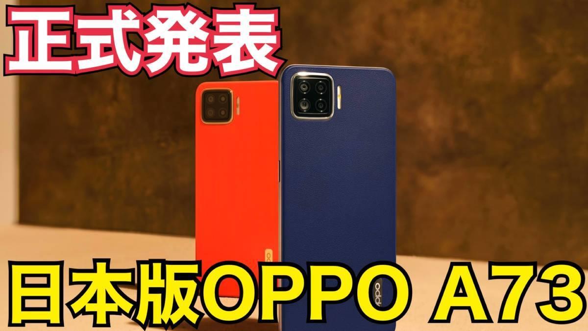 f:id:Azusa_Hirano:20201110114819j:plain