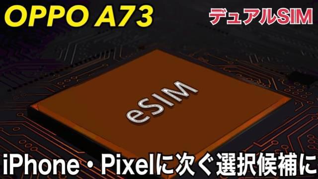 f:id:Azusa_Hirano:20201110200339j:plain